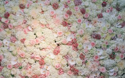Ścianka za parą młodą kwiaty wynajem